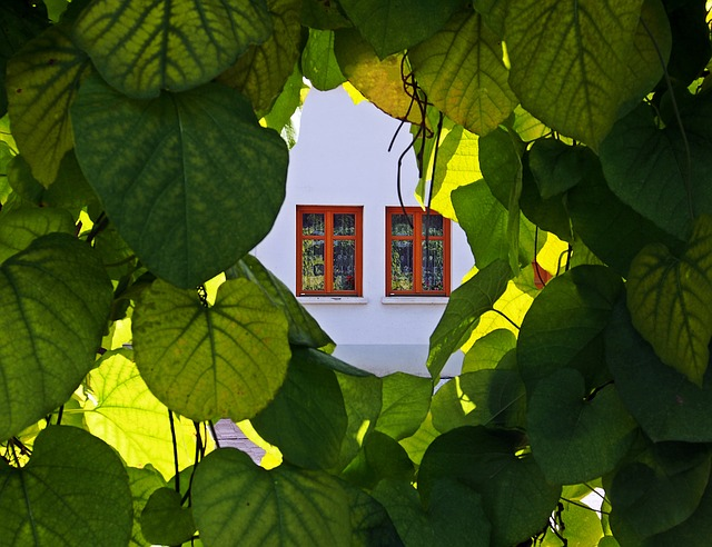 gardinbus med klimavenlige gardiner